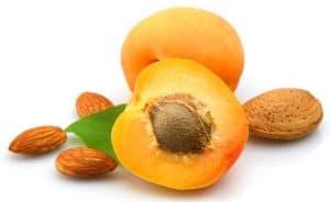 buah beracun - biji aprikot