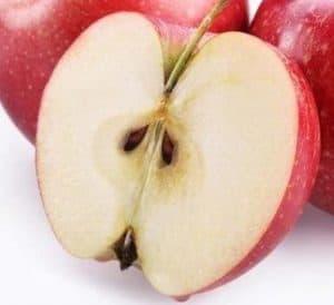 buah berbahaya - biji apel