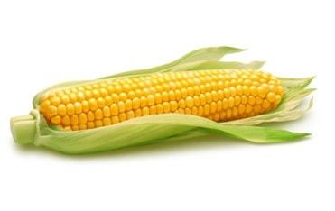 19 Makanan yang Mengandung Amilum Super Tingi
