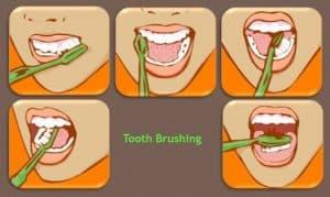 sikat gigi yang benar