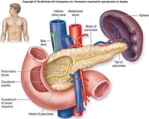 Diabetes Basah – Gejala, Penyebab, Pengobatan dan Pencegahan