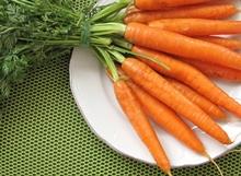 ramuan wortel