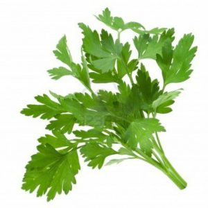 parsley-more-than-just-a-simple-spice1