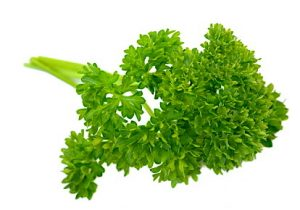 parsley_2