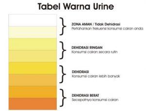 tabel air seni