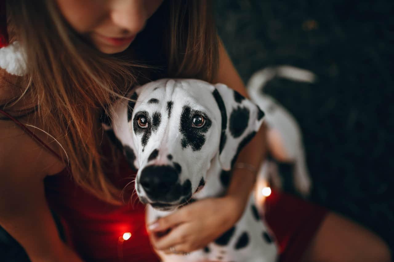 Karena Insiden dengan Anjingnya, Wanita Ini Hanya Punya Satu Lubang Hidung