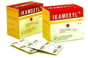 ikamoxyl-plus-500