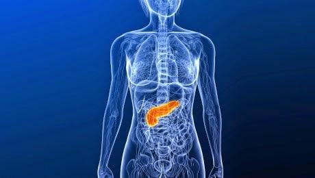 Konsumsi 6 Makanan Ini untuk Menjaga Kesehatan Pankreas
