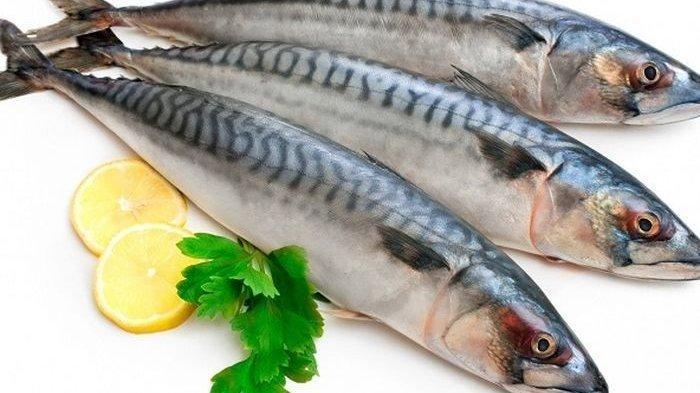 Intip 9 Manfaat Kesehatan Ikan Kembung