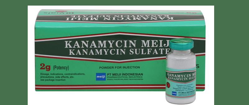Kanamycin-2g
