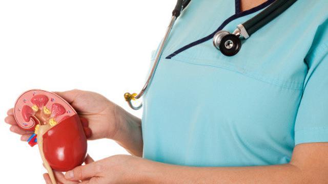 Ciri-ciri Ginjal Sehat