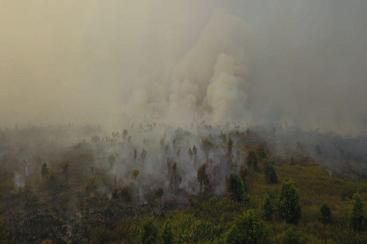 Kalimantan dan Riau Darurat Asap, Apa Dampaknya Bagi Kesehatan?