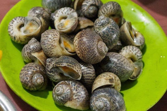 Makan Siput Bikin Otak Pria Ini Jadi Sarang Cacing Pita Selama 15 Tahun