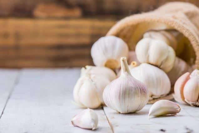 Manfaat Bawang Putih untuk Kesehatan Otak