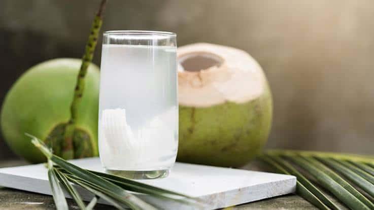 Konsumsi Air Kelapa Bisa Turunkan Kolesterol, Ini 3 Caranya